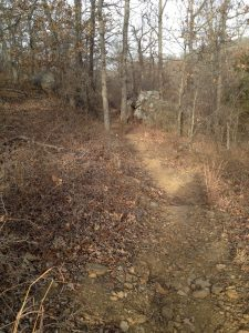 A picture of the Hiking Trail That We walk Our German Shepherd Dogs on.
