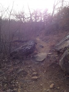Another Picture of the Rugged Trail We Hike with Our German Shepherd Dogs